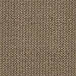 Style To the Point I0161 Commercial Carpet